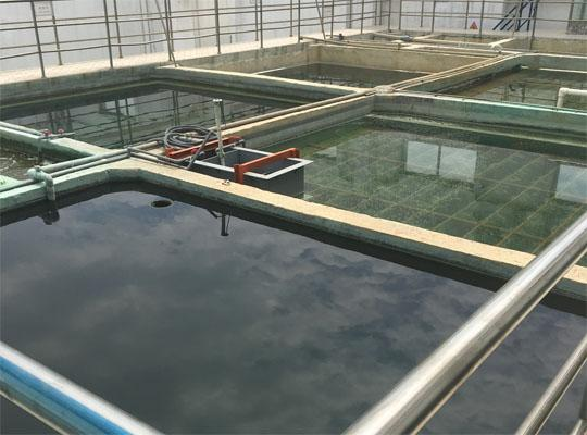 舒华股份有限公司酸洗磷化废水处理